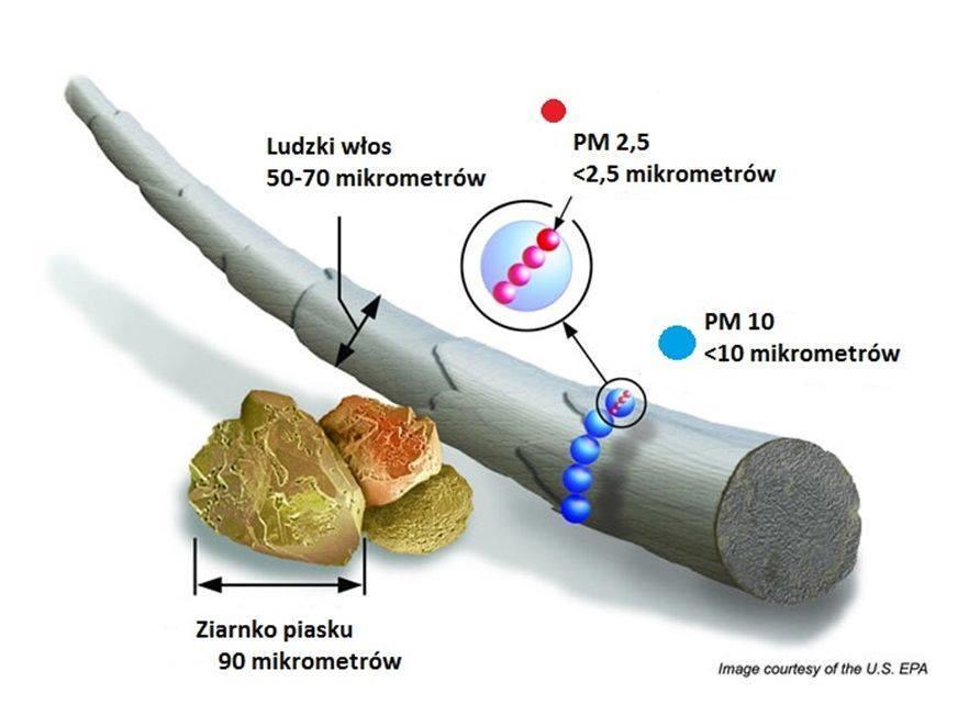 Wielkość pyłów PM2.5 i PM10 na tle włosa