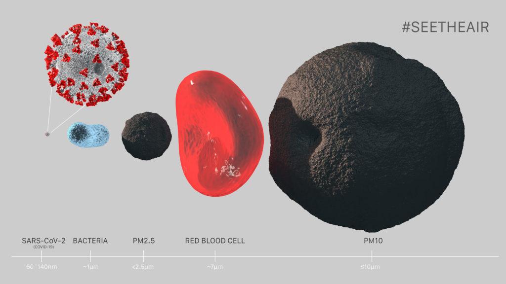 SARS-CoV-2 a inne cząsteczki