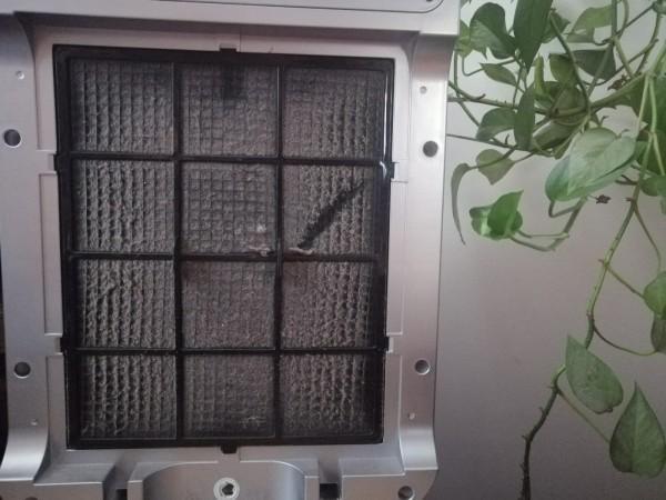 Zakurzony filtr wstępny w oczyszczaczu powietrza