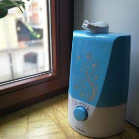 Nawilżacz powietrza Hanks Air przy oknie