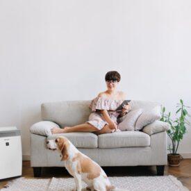 Oczyszczacz powietrza Sharp KI-G75EU obok kanapy, kobiety i psa